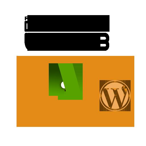 Soluciones web WP