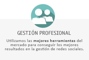 Gestión profesional